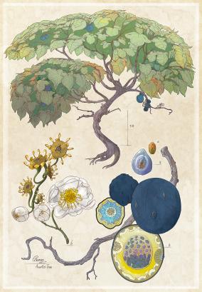 Blue Fruit Tree