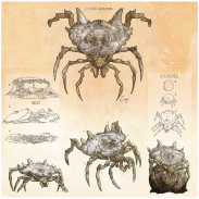 Shield_Spiders_FinalComp_HiRes