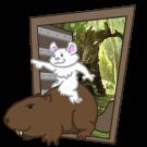 Beaver Ride by Brack